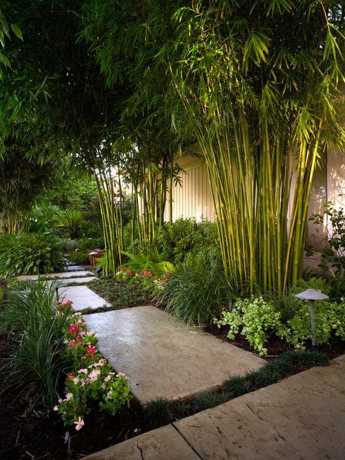 garden design and ideas tropical photo - 2
