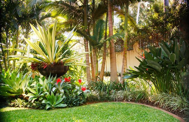 garden design and ideas tropical photo - 3