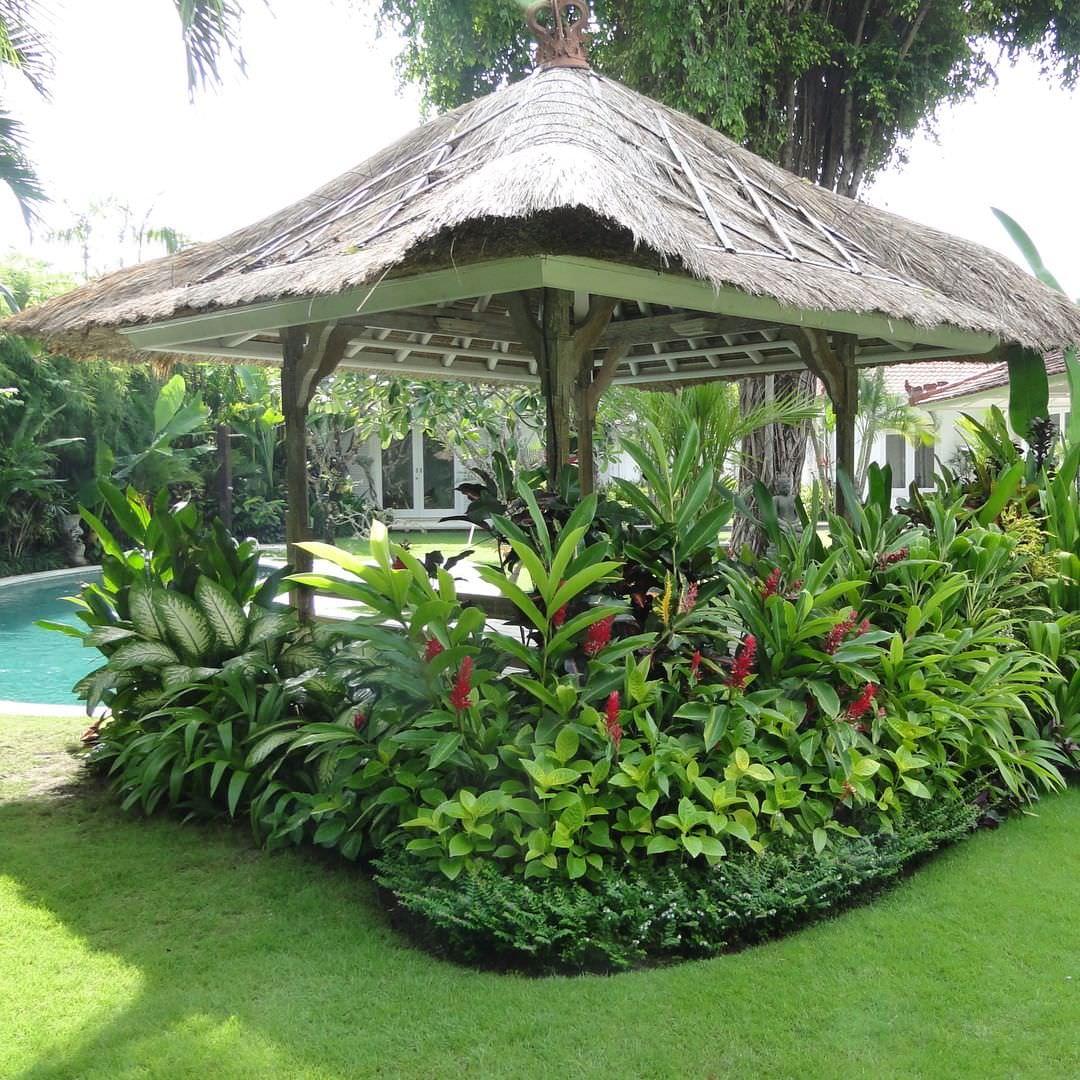 garden design and ideas tropical photo - 8