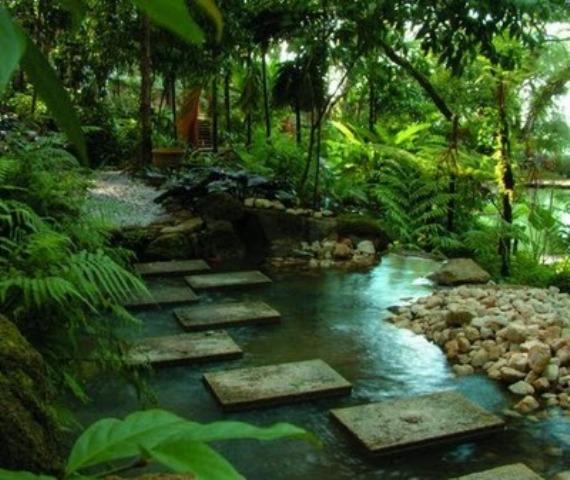 garden design and ideas tropical photo - 9