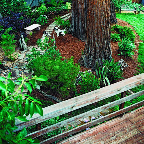 garden design ideas dogs photo - 10