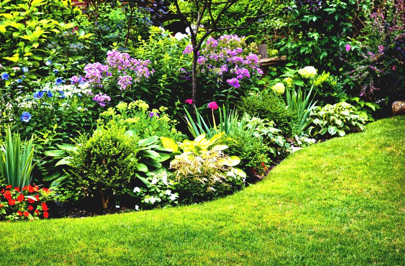 Garden Design Ideas Full Sun Hawk Haven