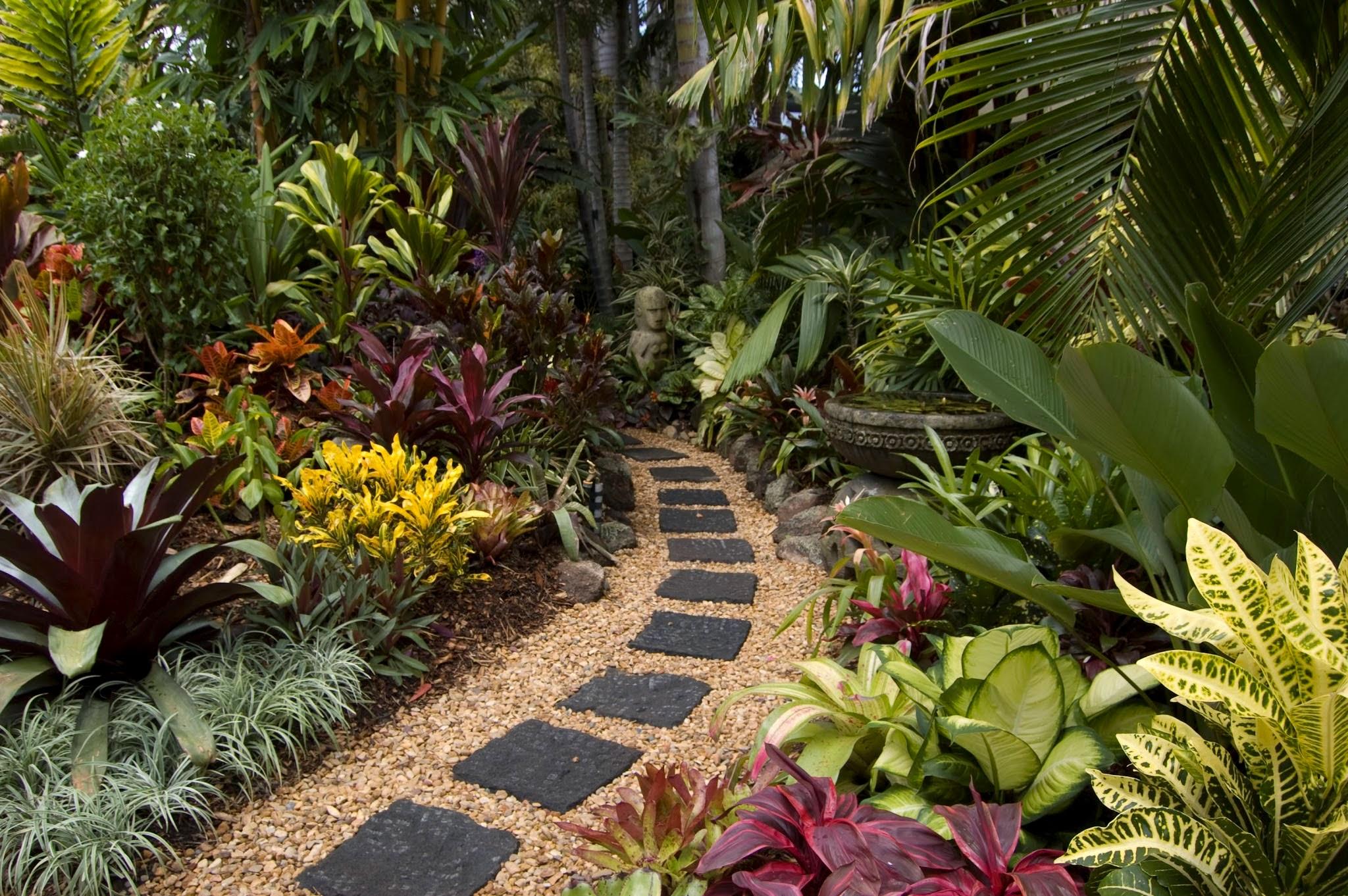 garden design ideas gold coast photo - 3