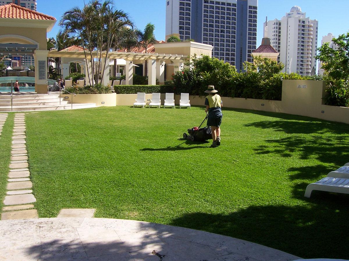 garden design ideas gold coast photo - 8