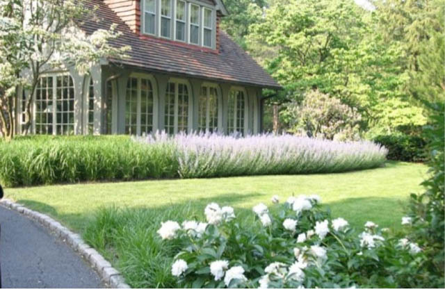 garden design ideas lavender photo - 10