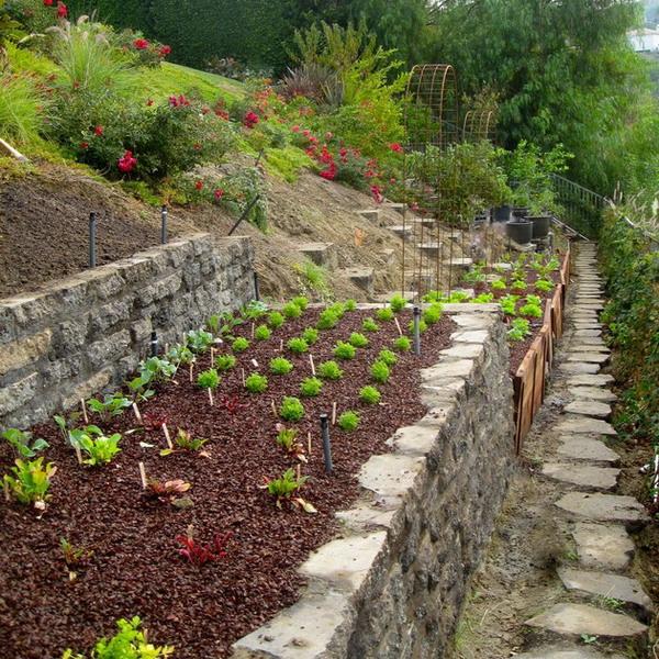 garden design ideas on a slope photo - 1