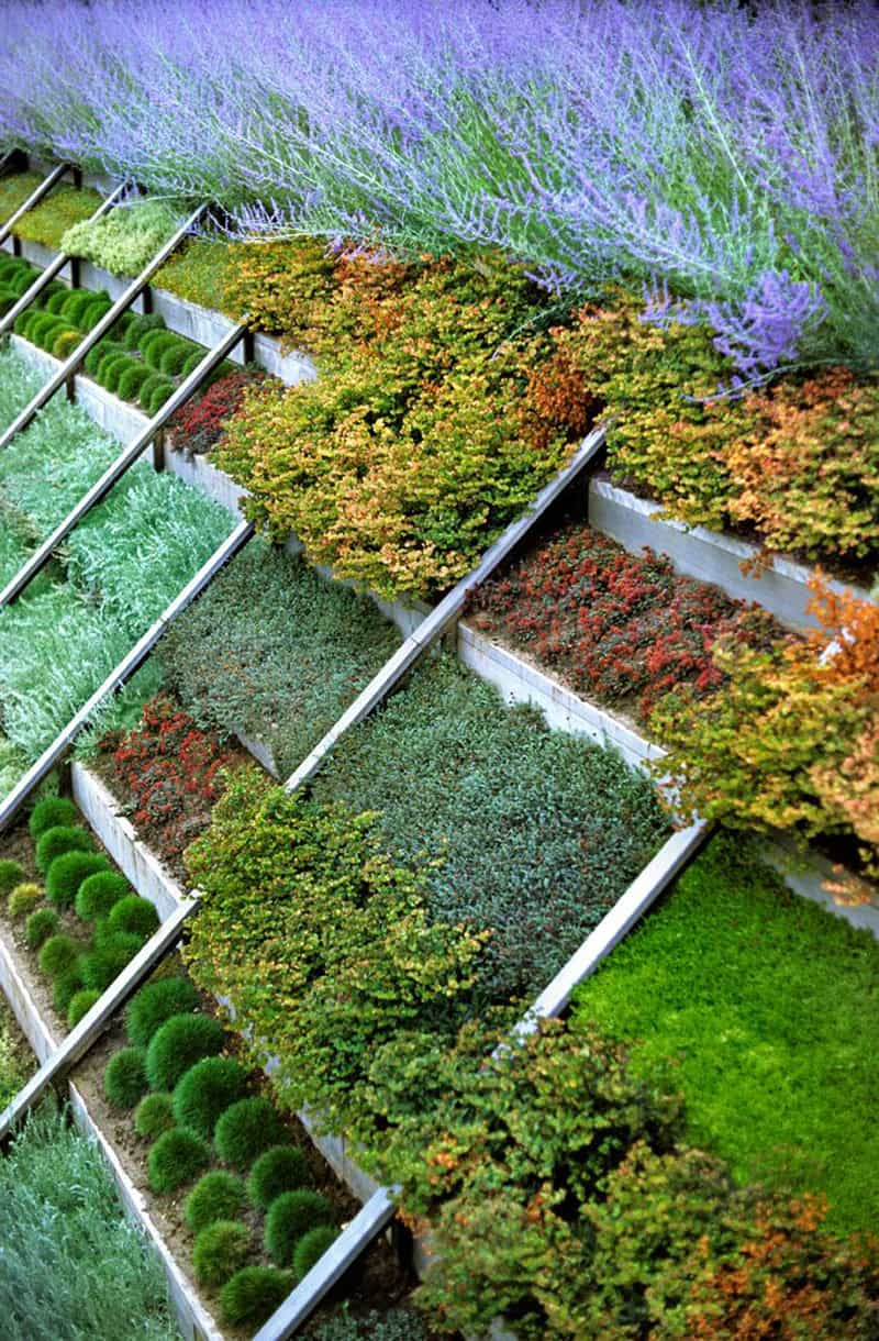garden design ideas on a slope photo - 7