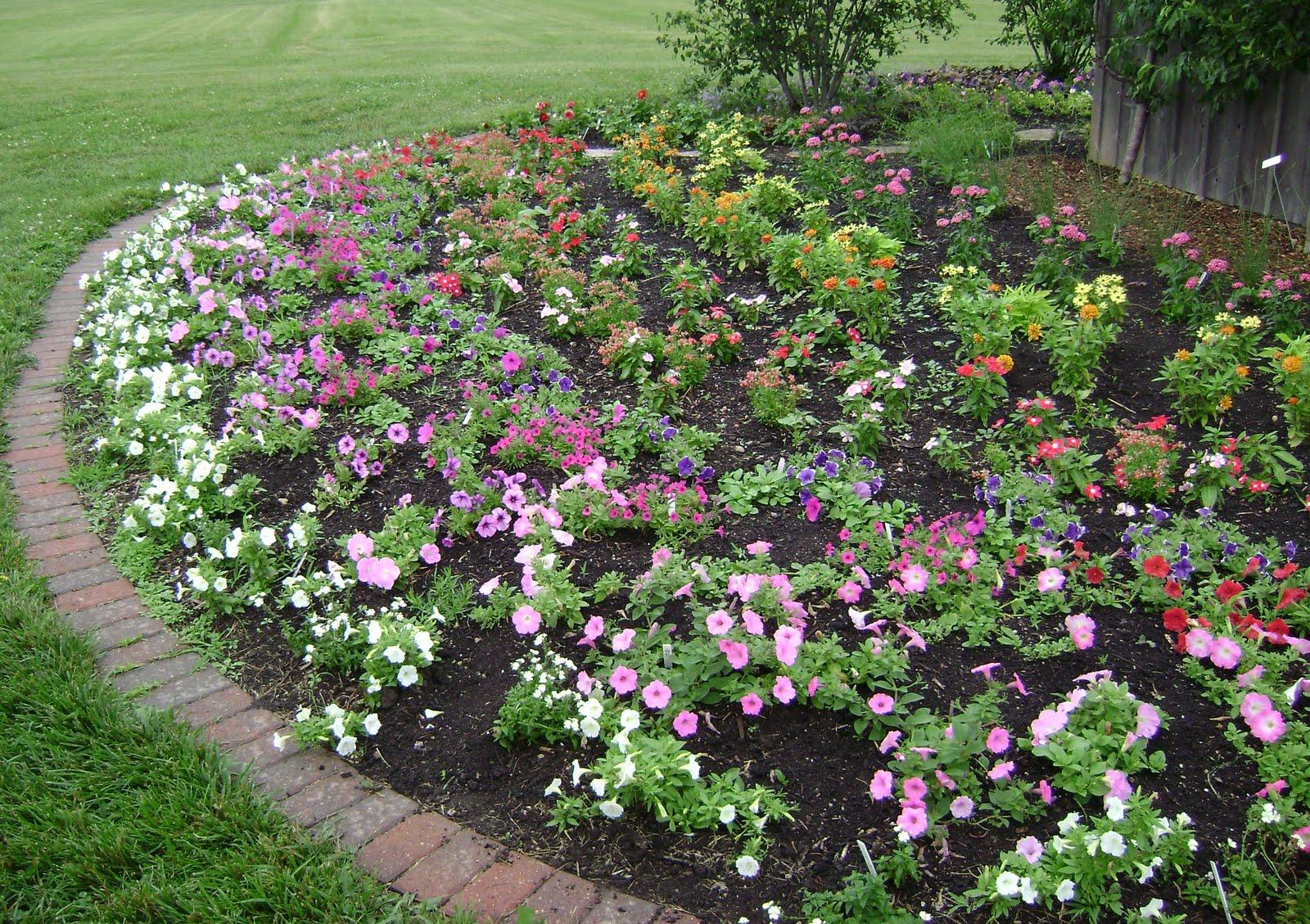 garden design ideas roses photo - 7
