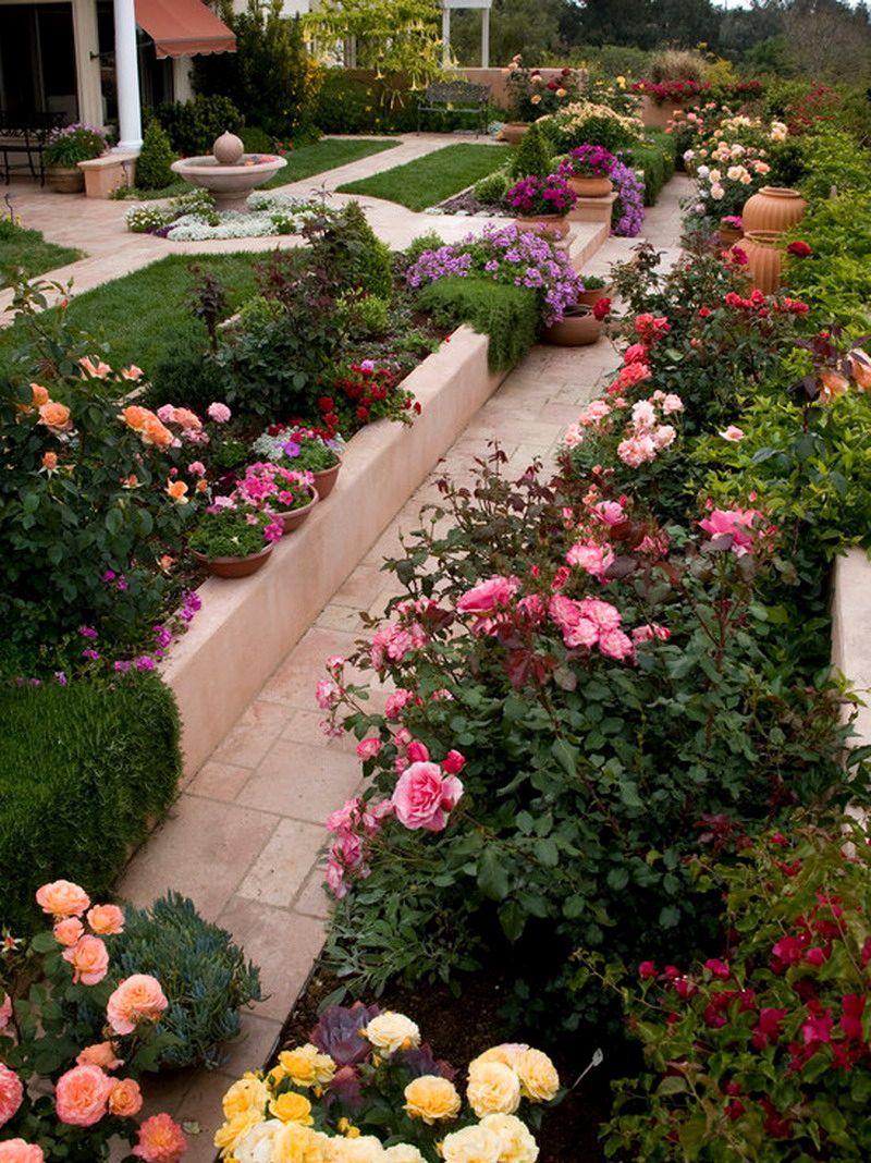 garden design ideas roses photo - 8