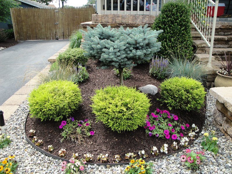 Garden Design Ideas Shrubs Hawk Haven