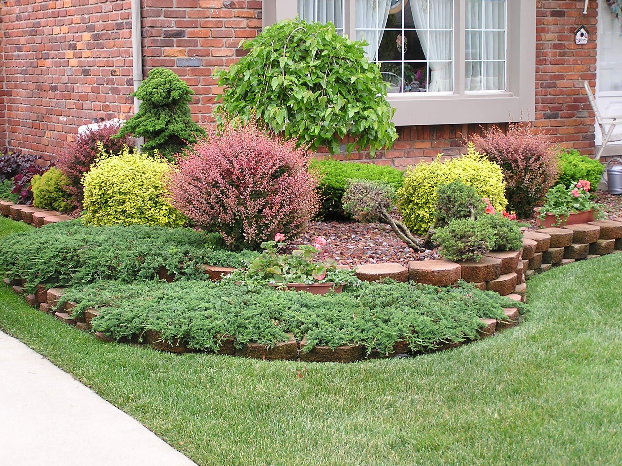 garden design ideas shrubs photo - 3