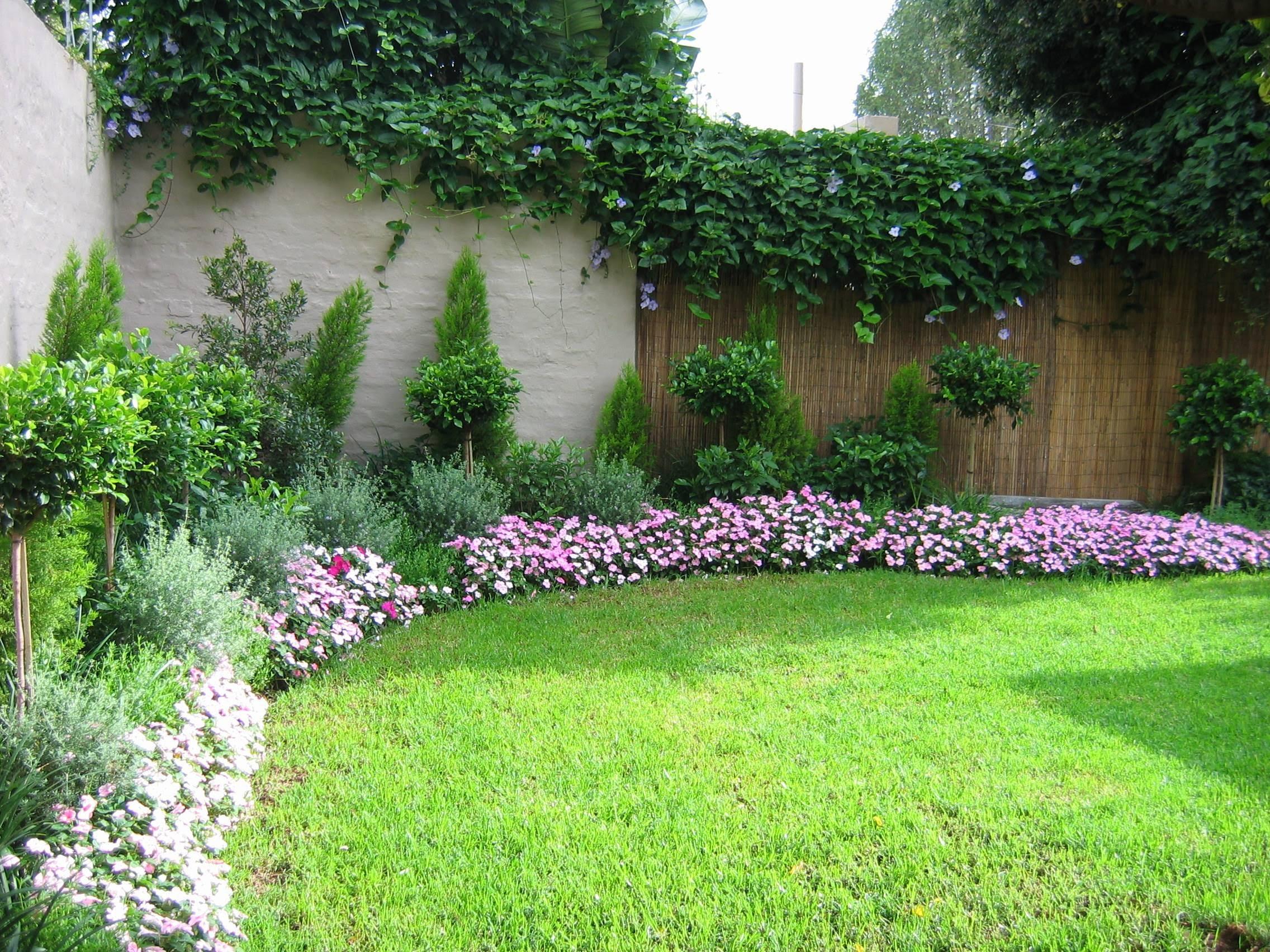garden design ideas shrubs photo - 7