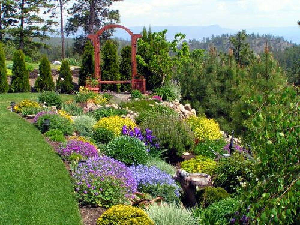 garden design ideas shrubs photo - 8