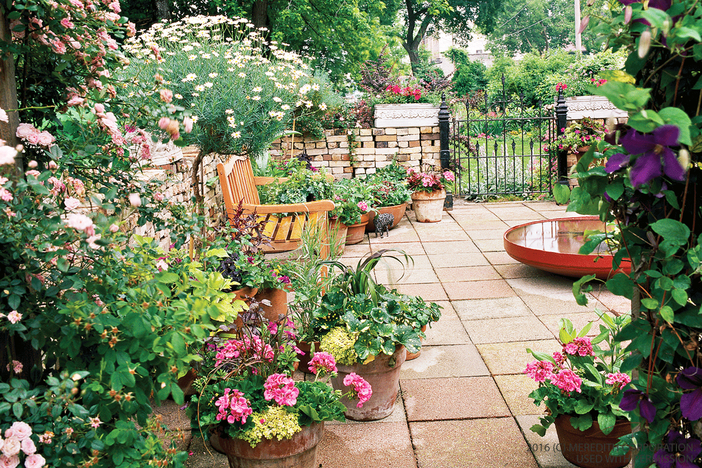Garden Design Ideas Small Gardens Hawk Haven