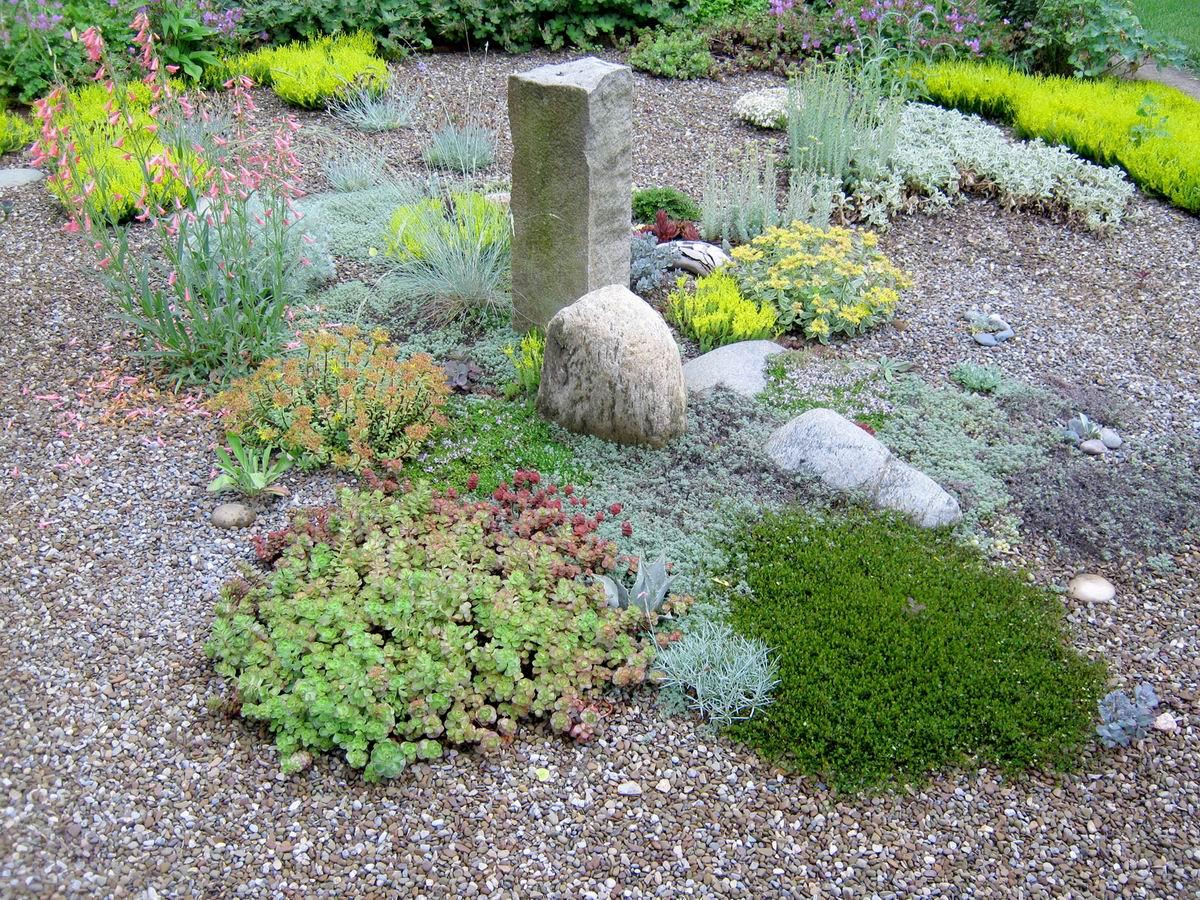 garden design ideas using gravel photo - 6