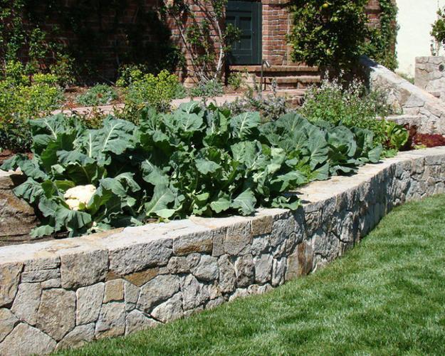garden design ideas with stones photo - 1