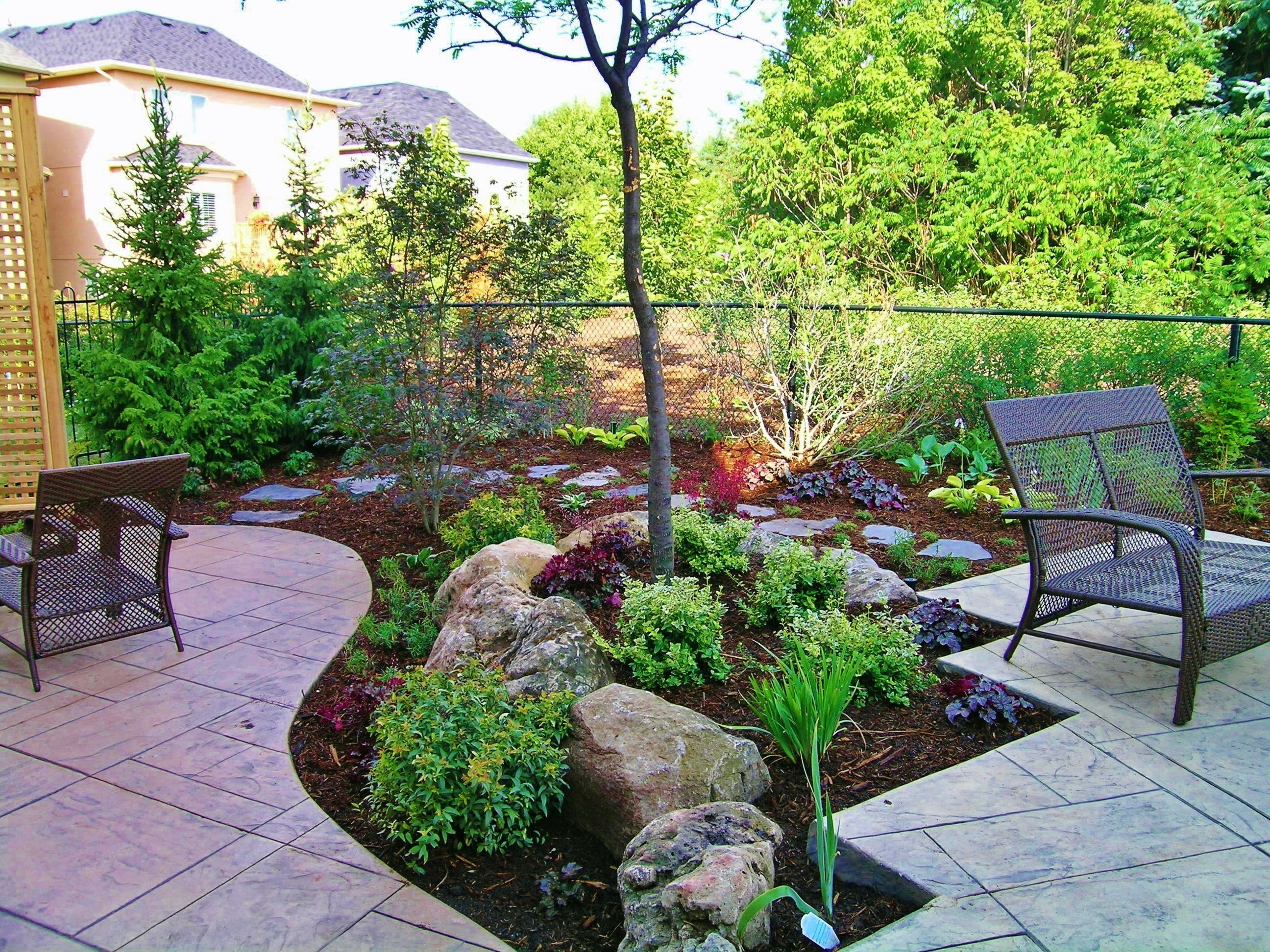 garden design ideas without grass photo - 10