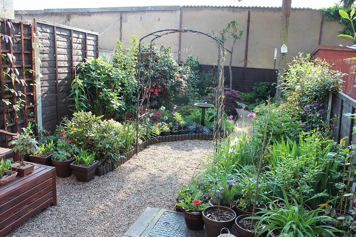 garden design ideas without grass photo - 3