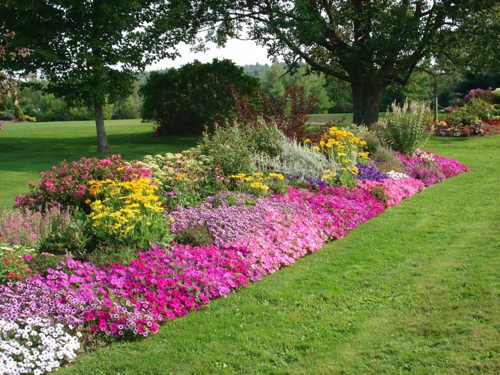 garden edging design ideas photo - 4