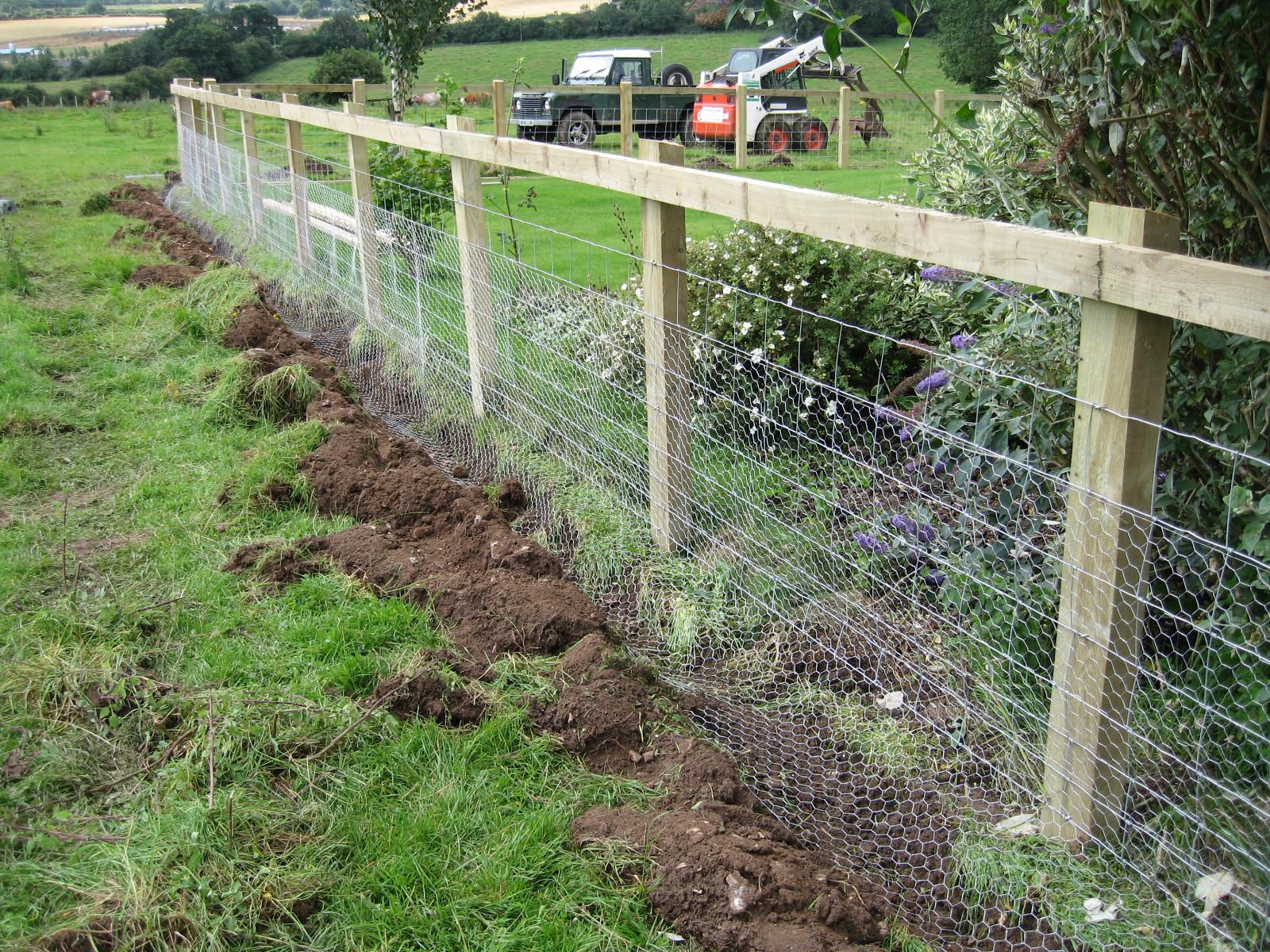 garden fence ideas for rabbits photo - 2