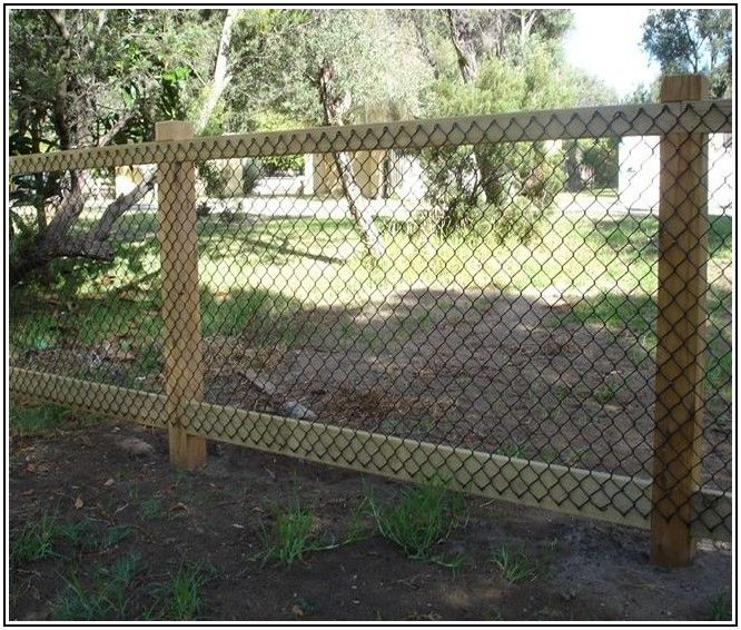 garden fencing ideas for dogs photo - 7