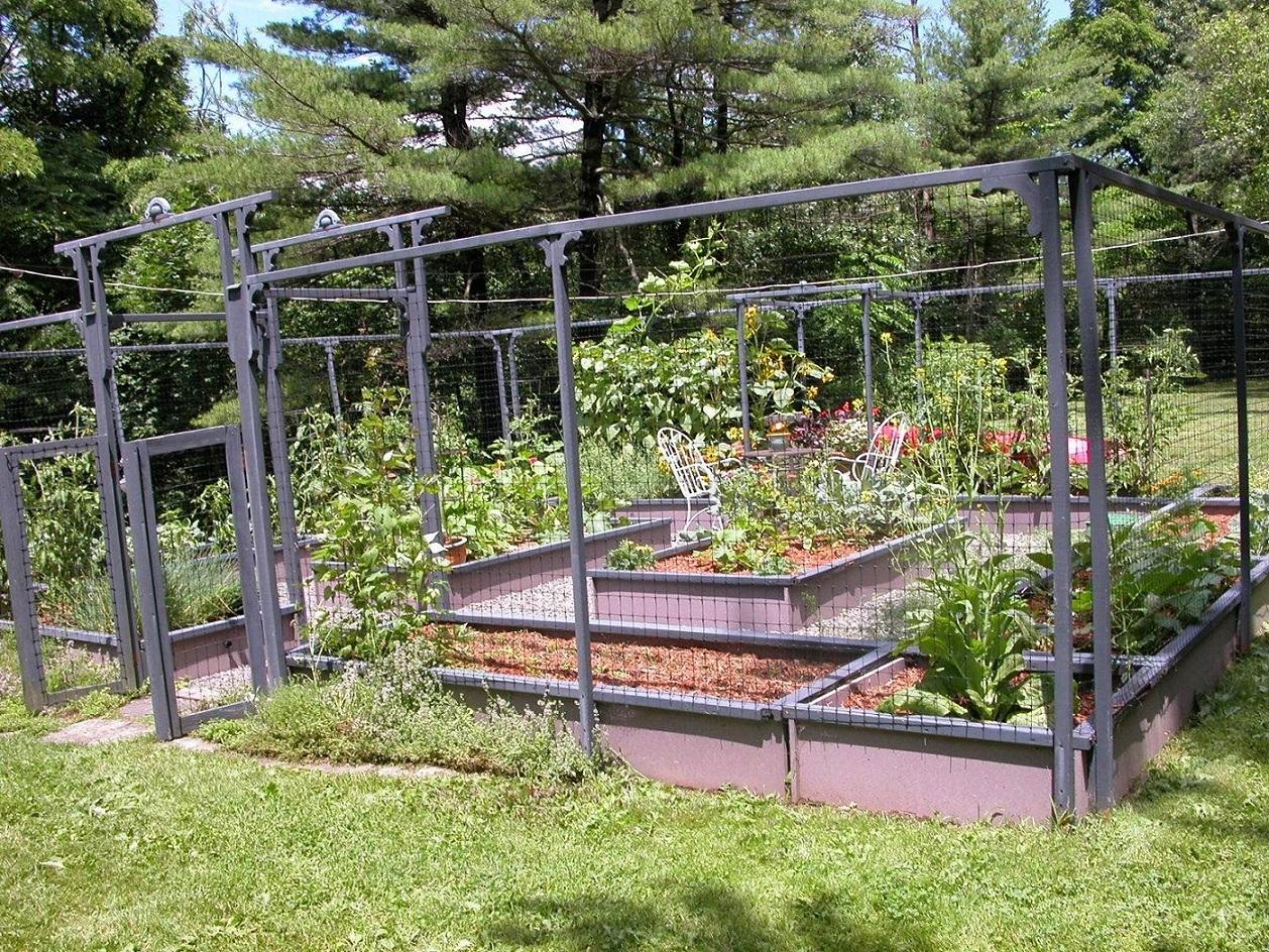 garden fencing ideas photos photo - 10