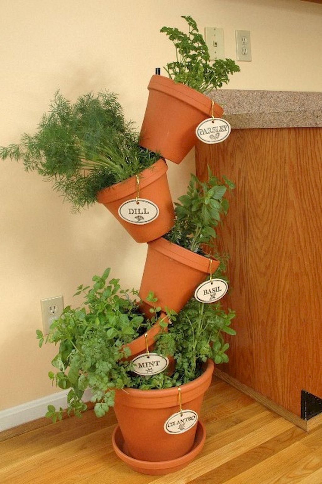 herb garden design ideas photo - 10