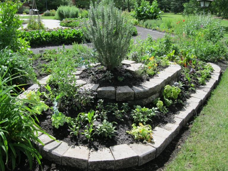 herb garden design ideas photo - 3