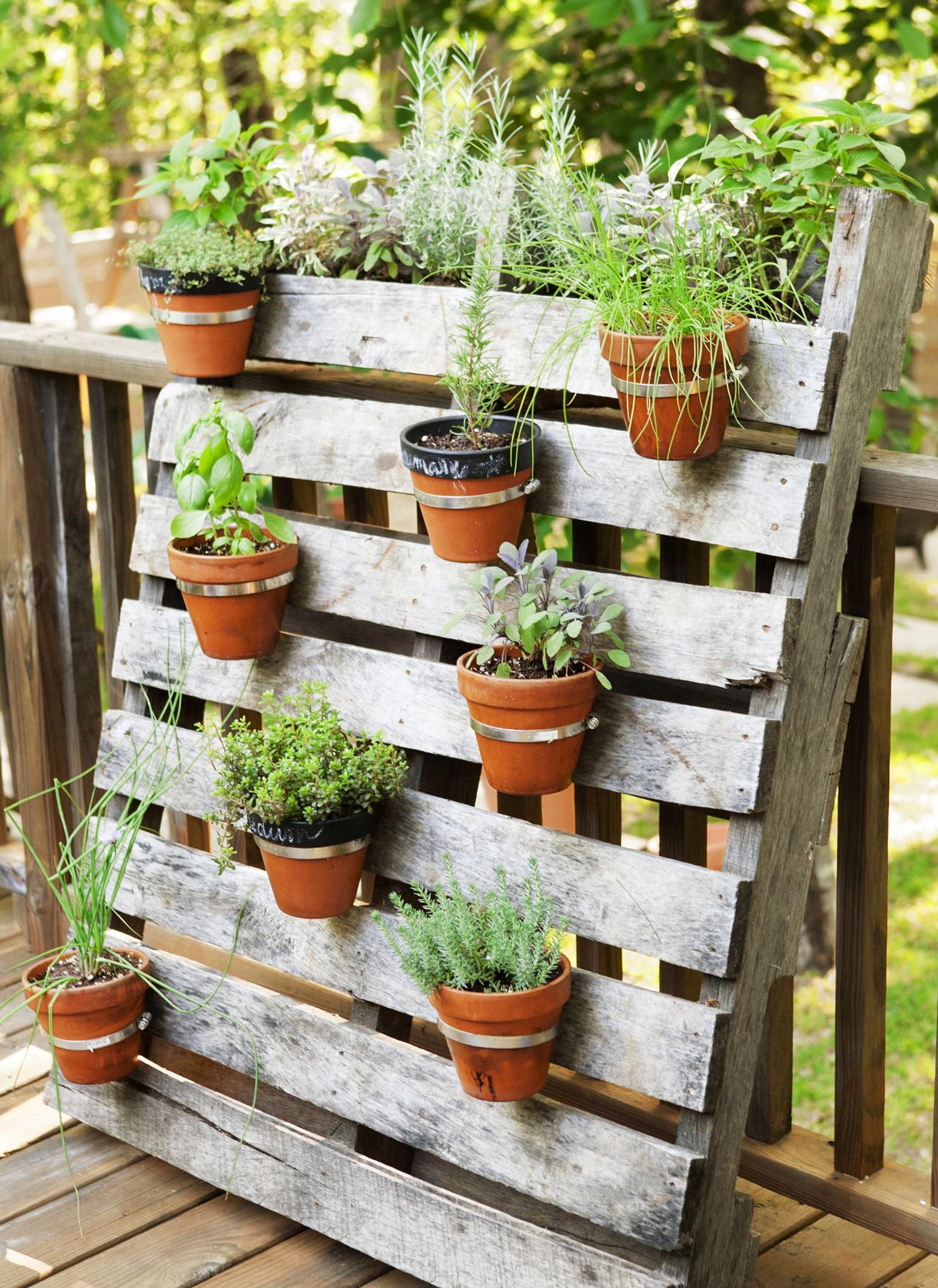 herb garden design ideas photo - 4