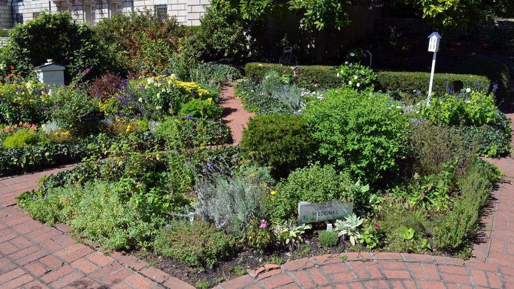 herb garden design ideas photo - 6