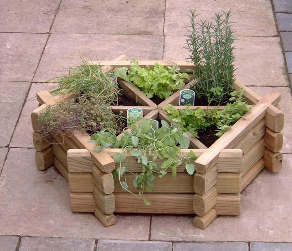 herb garden design ideas photo - 7