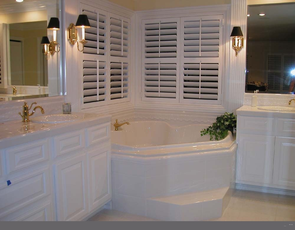 home bathroom design ideas photo - 1