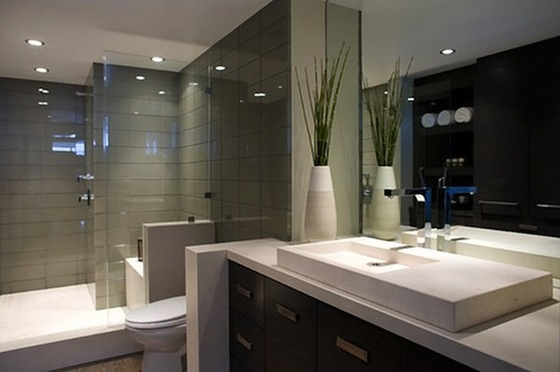 home bathroom ideas photo - 7