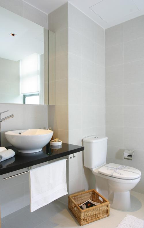 home bathroom singapore photo - 6
