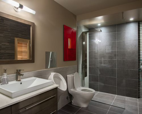 home bathrooms with urinals photo - 4