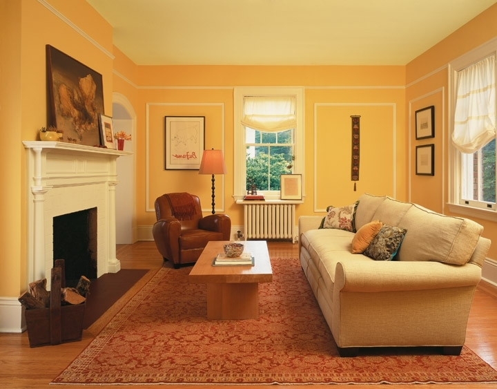 interior house paint examples photo - 1
