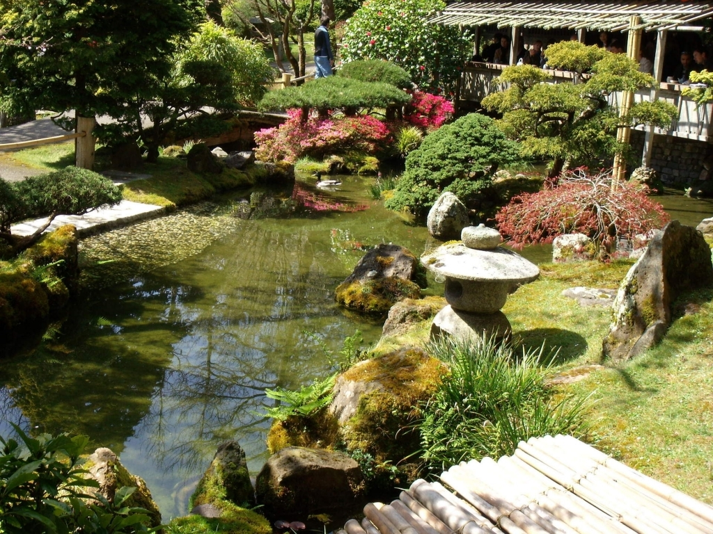 Japanese tea garden design ideas | Hawk Haven