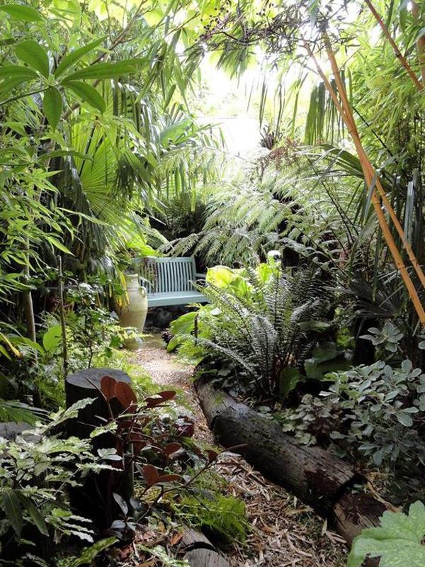 jungle garden design ideas photo - 1