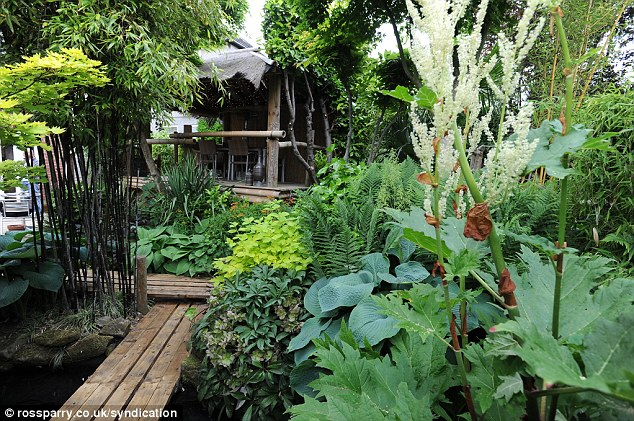 jungle garden design ideas photo - 2