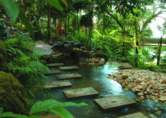 jungle garden design ideas photo - 4