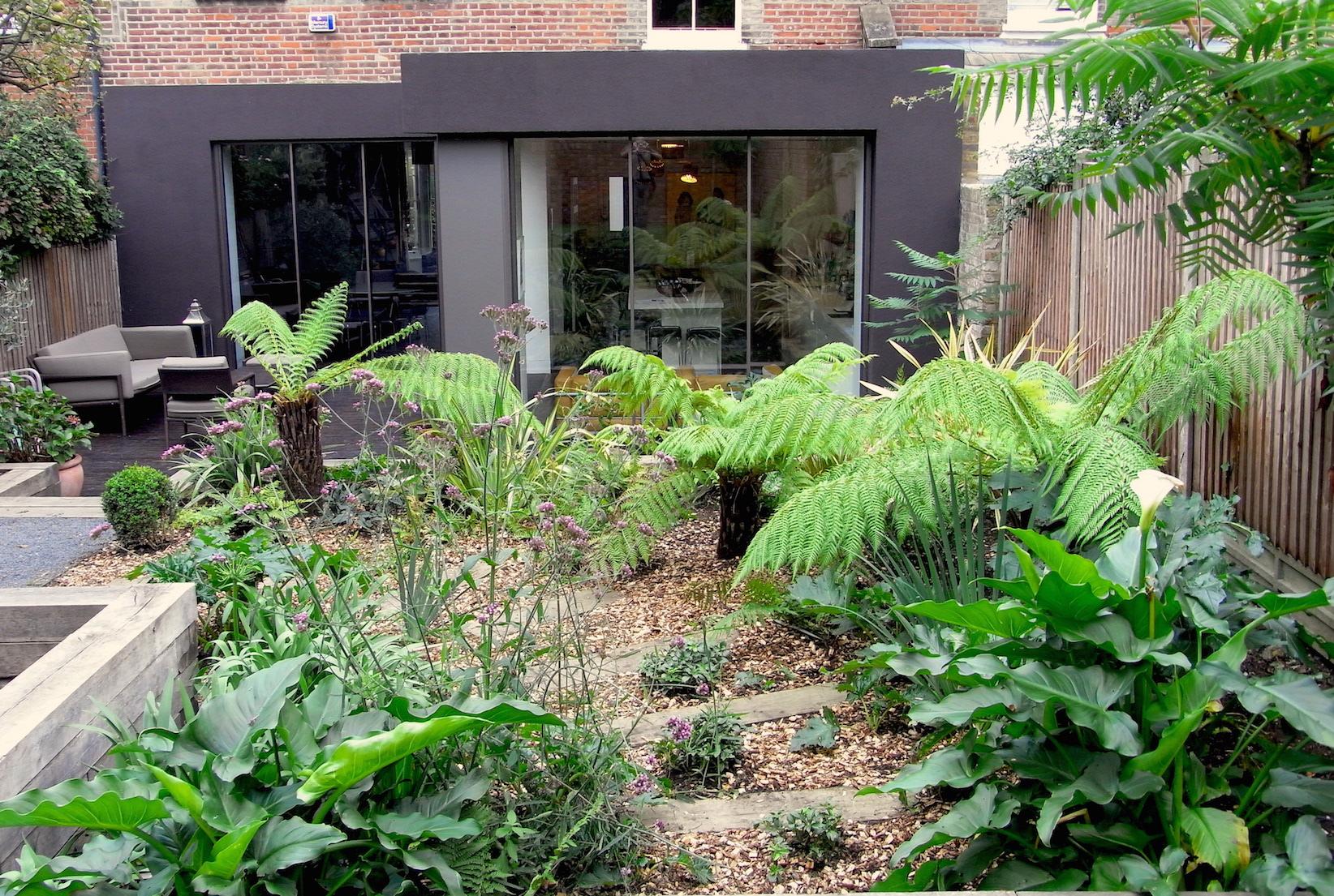 jungle garden design ideas photo - 9