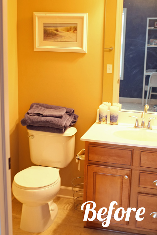 Kids And Guest Bathroom Ideas Photo   1
