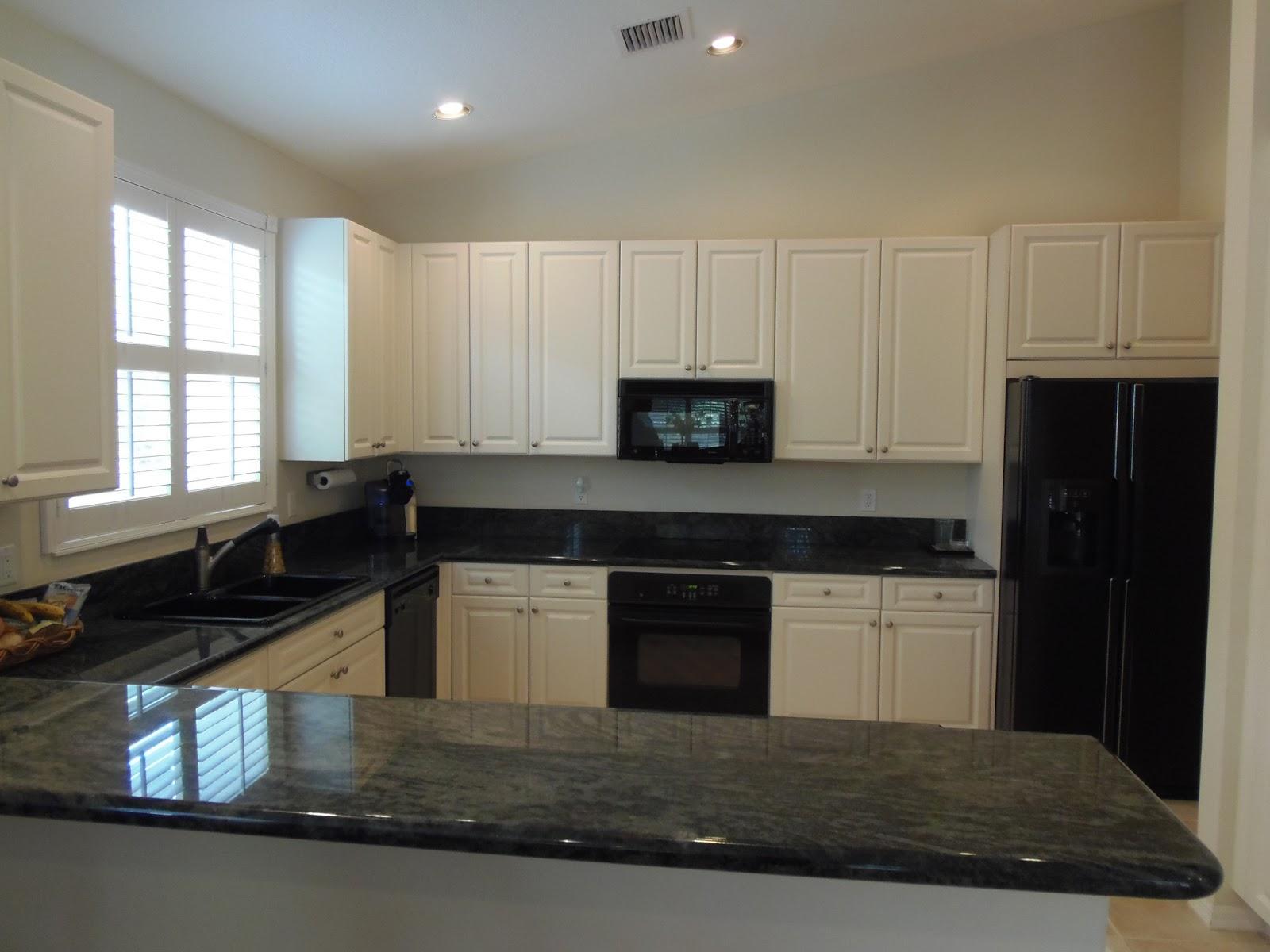 kitchen cabinet color ideas with black appliances photo - 4