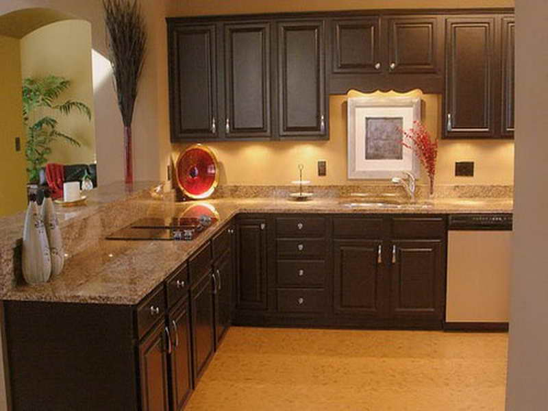 kitchen cabinet stain ideas photo - 7