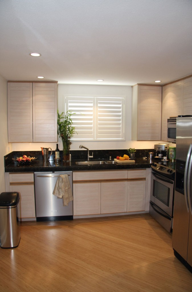 Kitchen Design Ideas Condo