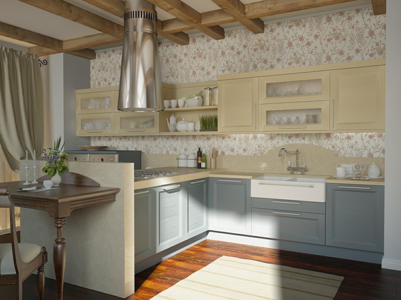 kitchen designs pictures design ideas photo - 10