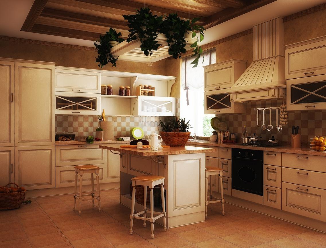 kitchen designs pictures design ideas photo - 7