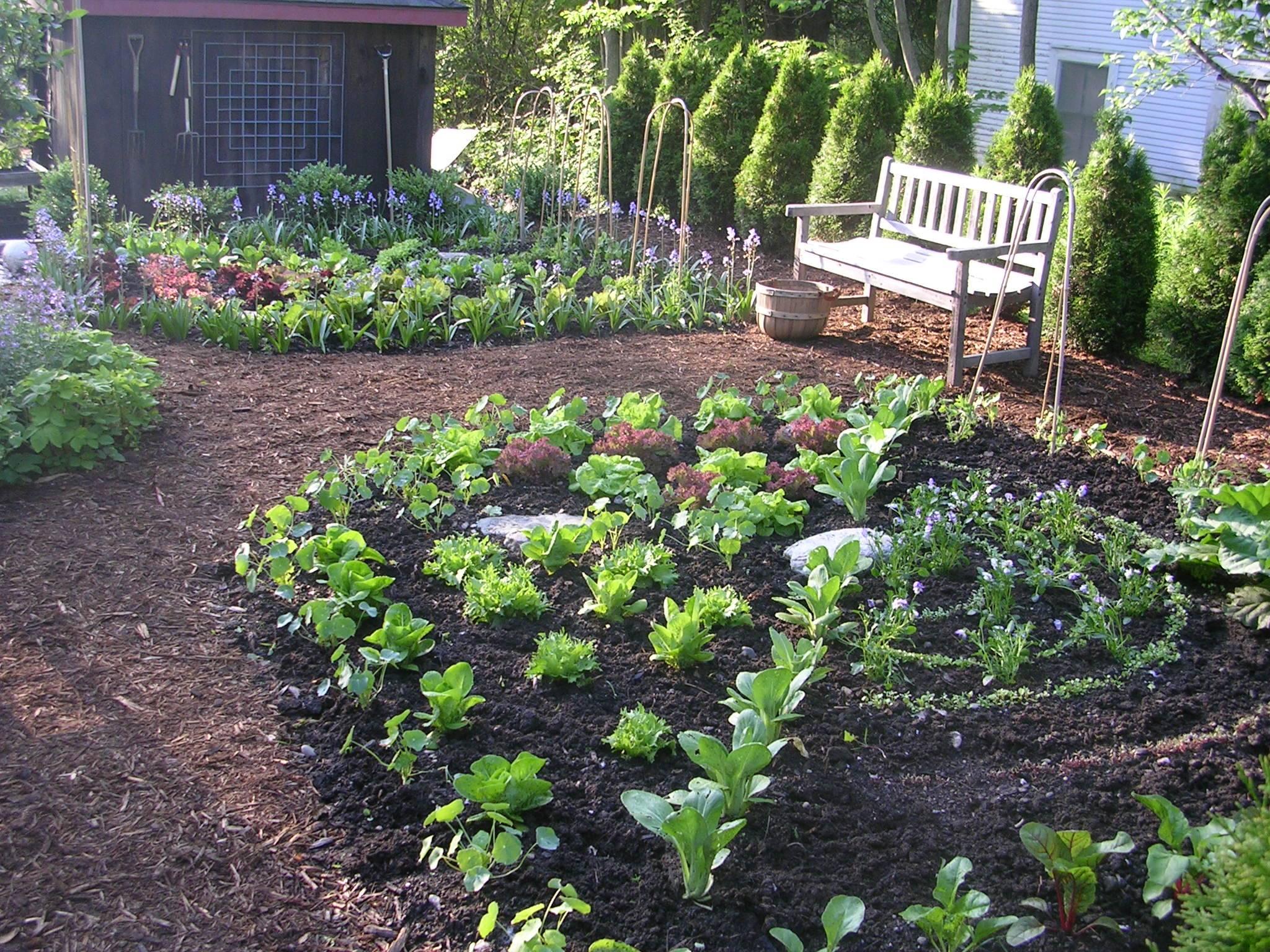 Kitchen garden design ideas | Hawk Haven