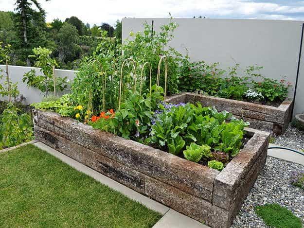 kitchen garden design ideas photo - 4