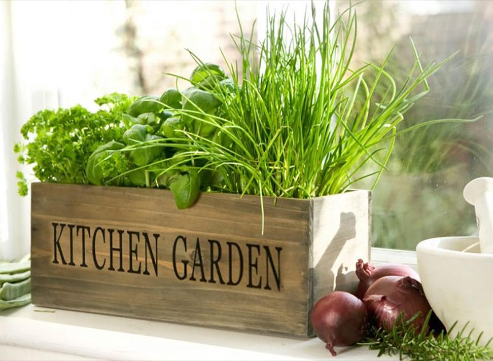 kitchen garden design ideas photo - 5